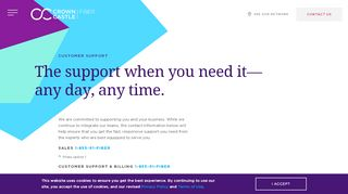 Lightower Customer Portal